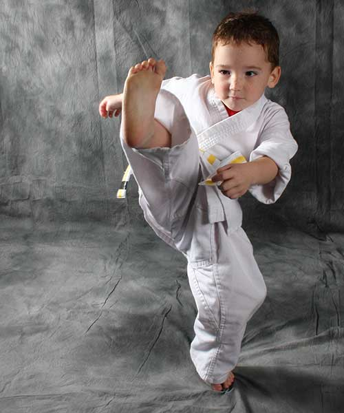 children's martial art classes in Lutz