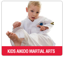 kids aikido martial arts washington DC