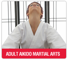 adults aikido martial arts washington DC