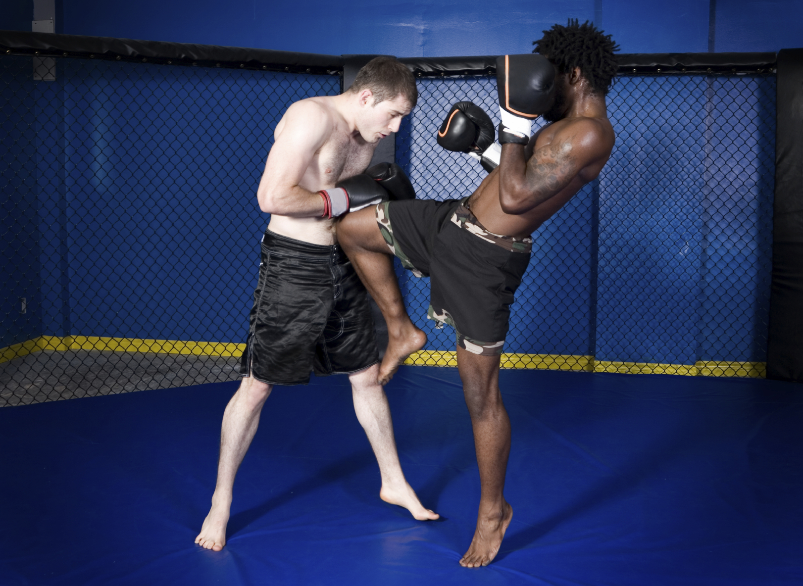 martial art program at Spring Grove Flying Dragons, Spring Grove