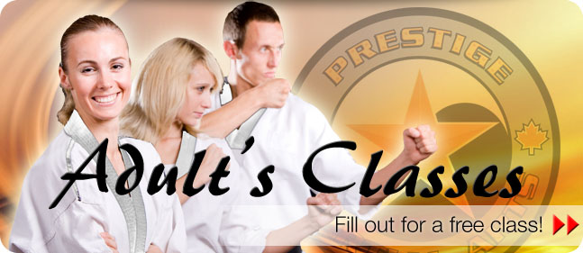 adults martial arts abbotsford chilliwack