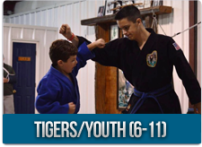 Tigers / Youth