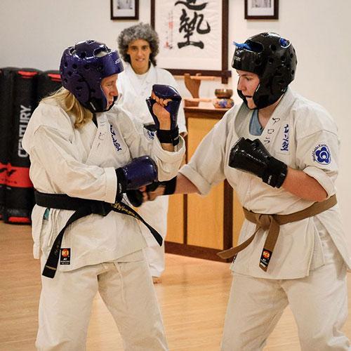 Adults Karate Program at Cayuga Lake Seido Karate, Lansing, NY
