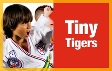 Tiny Tigers Martial Arts in glenview, Ill