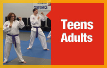 teen and adult martial art classes in Glenview, Ill