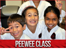 pee wee karate burlington