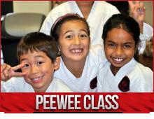pee wee karate burlington