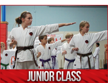 junior karate classes burlington
