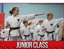 junior karate classes burlington