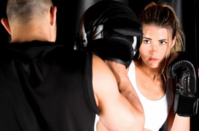 mixed martial arts fitness program