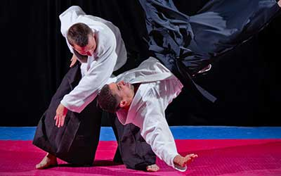Aikido Program at Elkhorn Flying Dragons, Elkhorn, WI