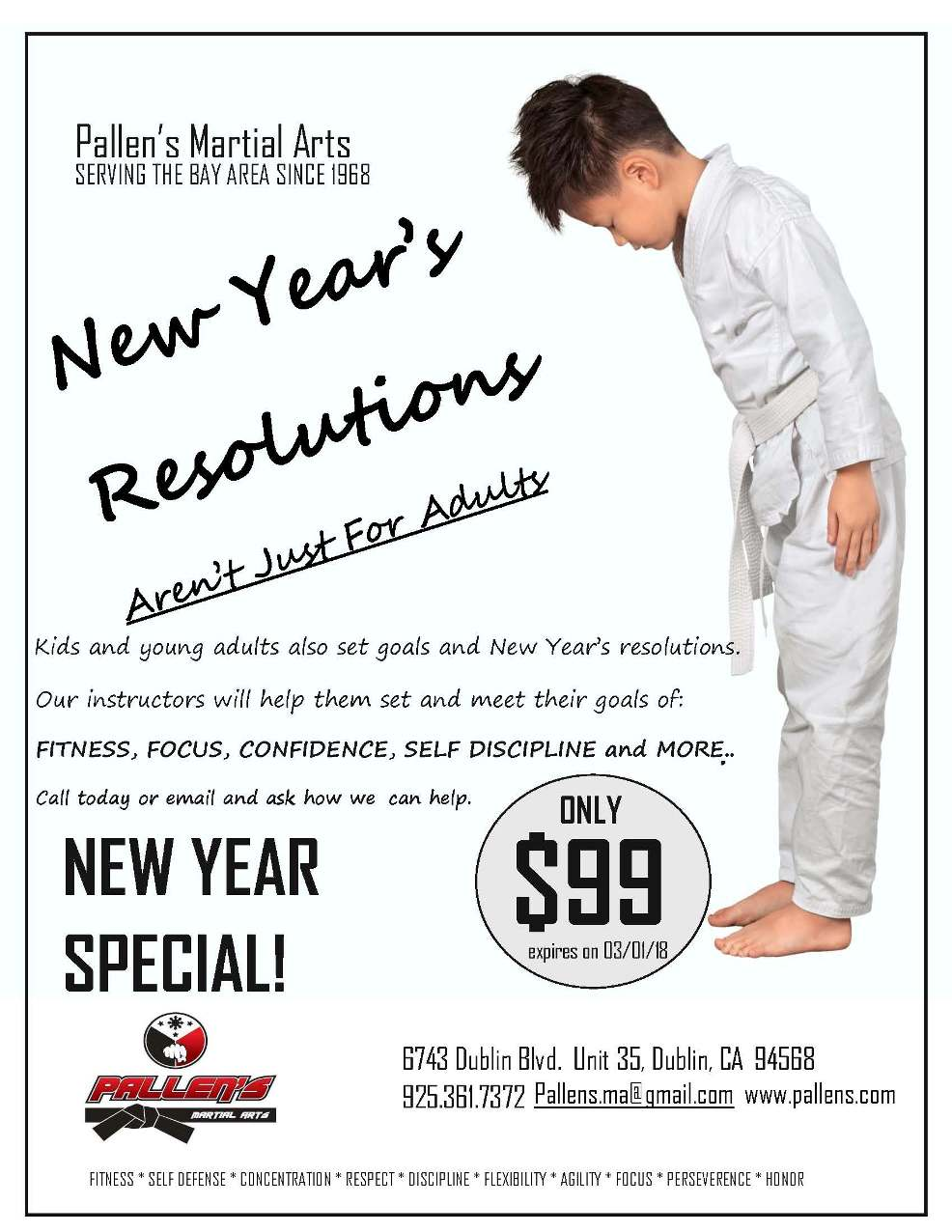 New years special pallen 39 s martial arts for 20 40 window missions