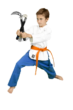 Child practicing Martial Arts in Lion's Den Karate