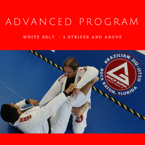 GB Advanced Program