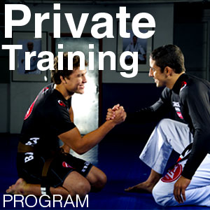 Gracie Barra Private Training Program
