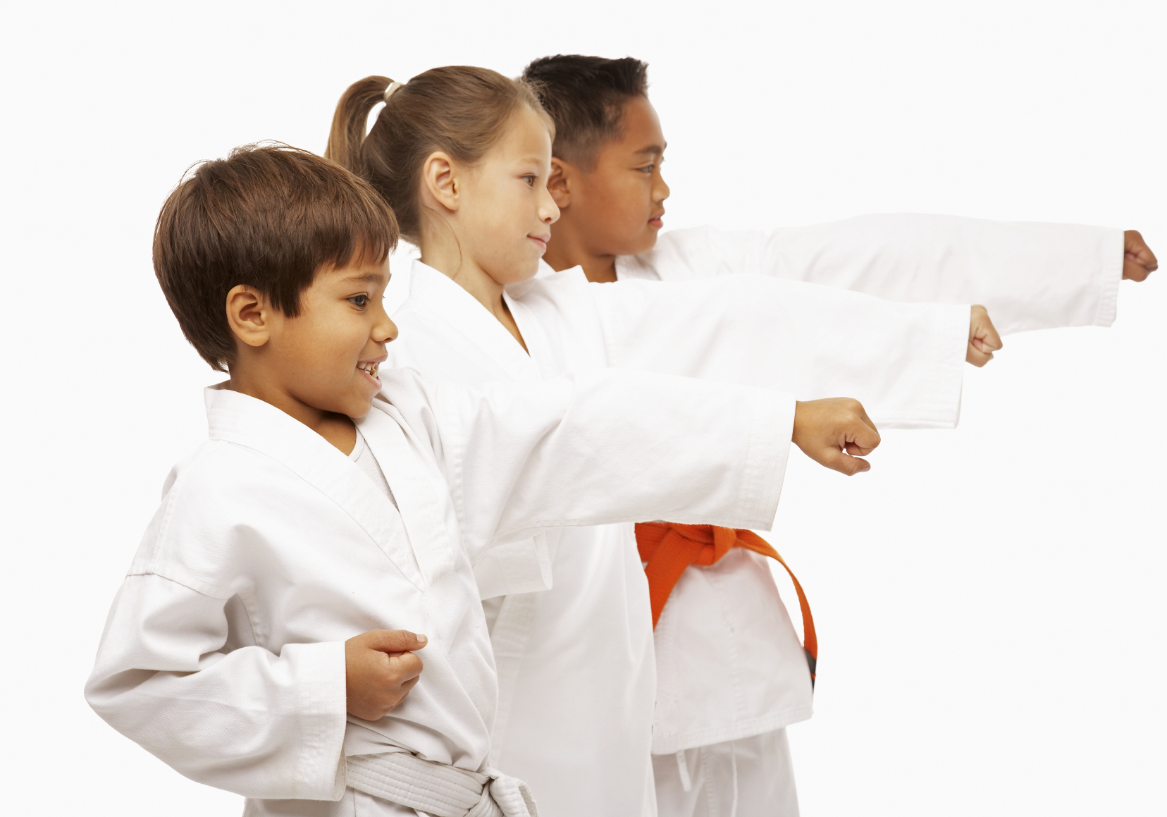 Image result for Martial Arts istock