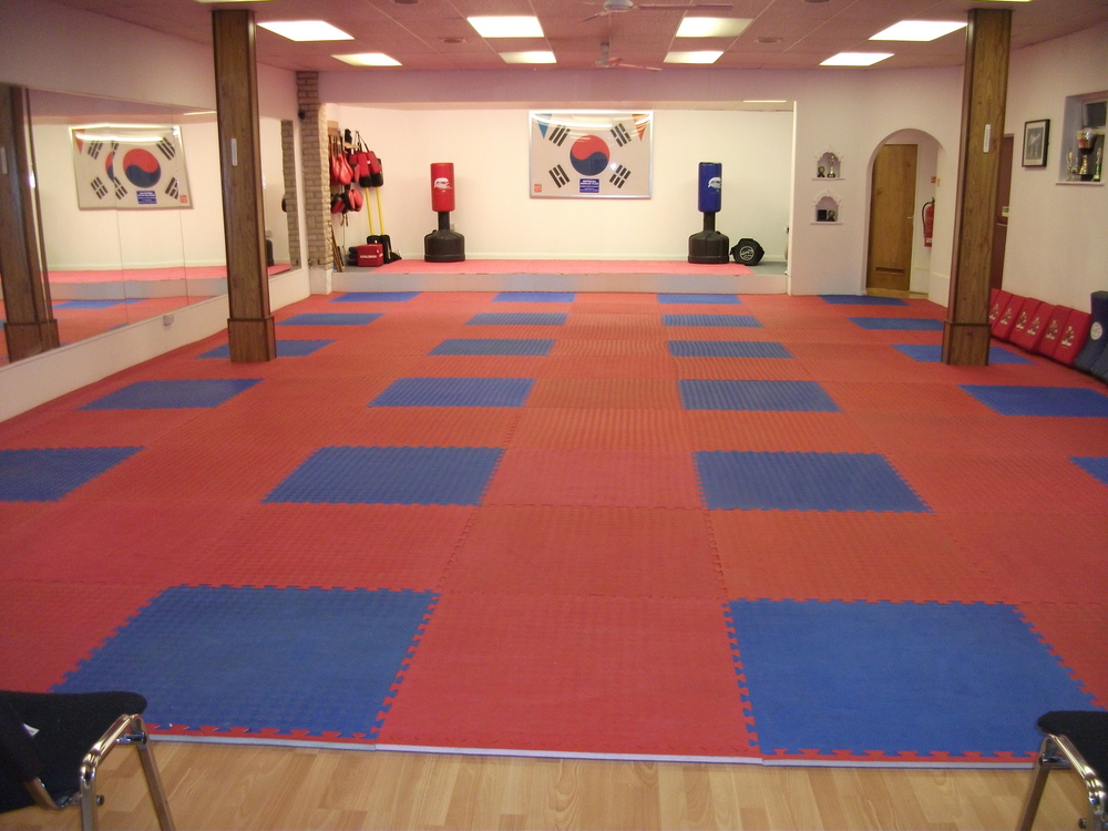 Lynx Black Belt Leadership Academy gym floor