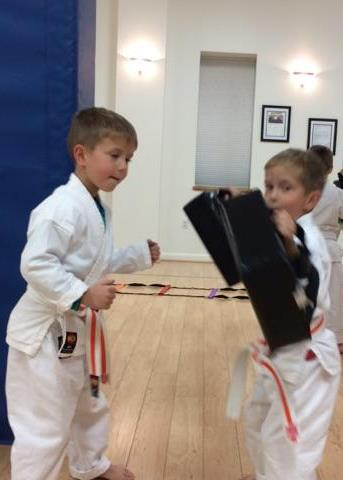 Motor Development and Coordination Cayuga Lake Seido Karate, Lansing, NY
