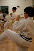Concentration and Self-Discipline Cayuga Lake Seido Karate, Lansing, NY