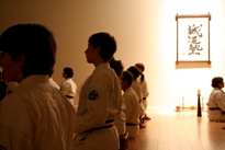 Improved Memory and Concentration Cayuga Lake Seido Karate, Lansing, NY