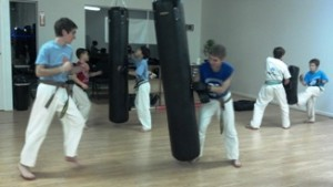 Life-long Fitness Cayuga Lake Seido Karate, Lansing, NY