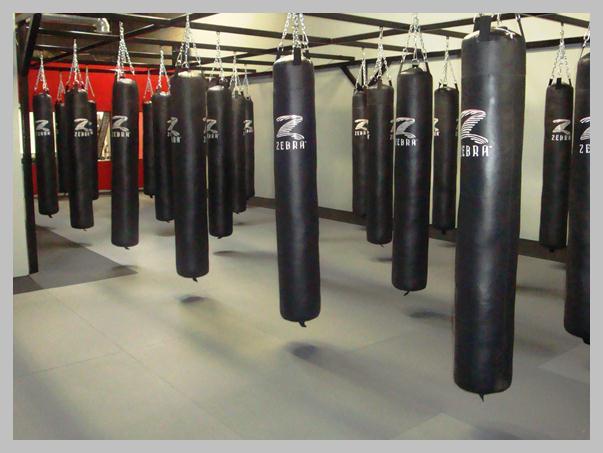 Owings Mills Martial Art