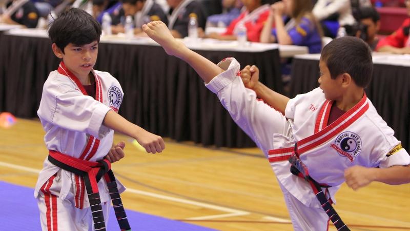 Sunnyvale Martial Arts Academy Children Martial Arts Program
