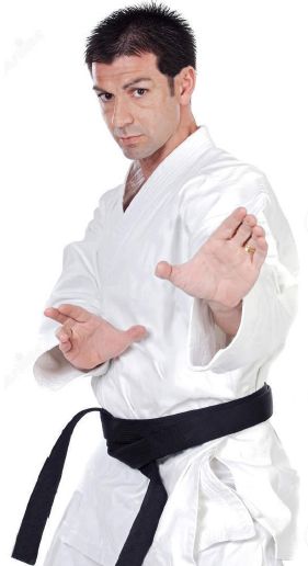adult male in martial arts stance