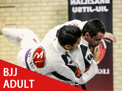 adults bjj in perth