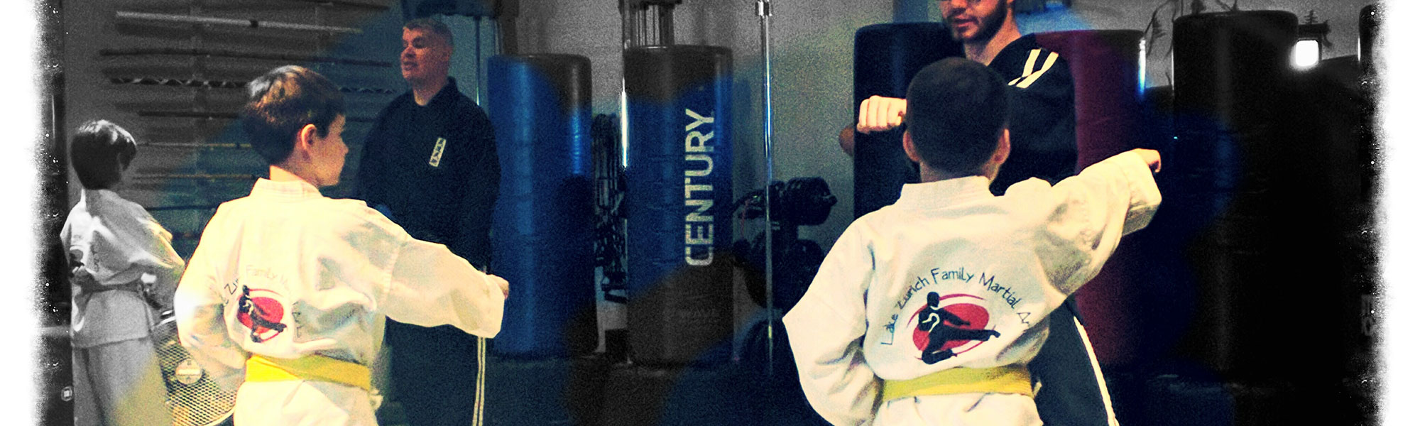 Lake Zurich Family Martial Arts