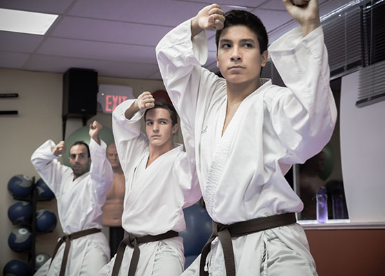 Adult Classes | Tigers Eye Karate Do