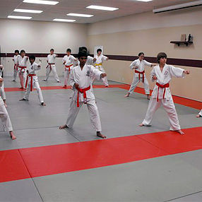 Teens doing Martial Arts