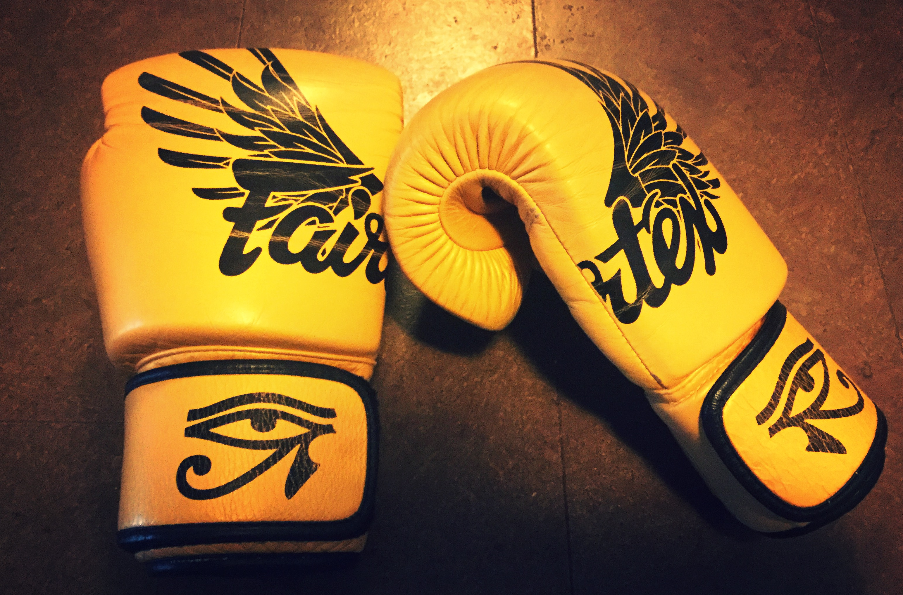 designer muay thai gloves