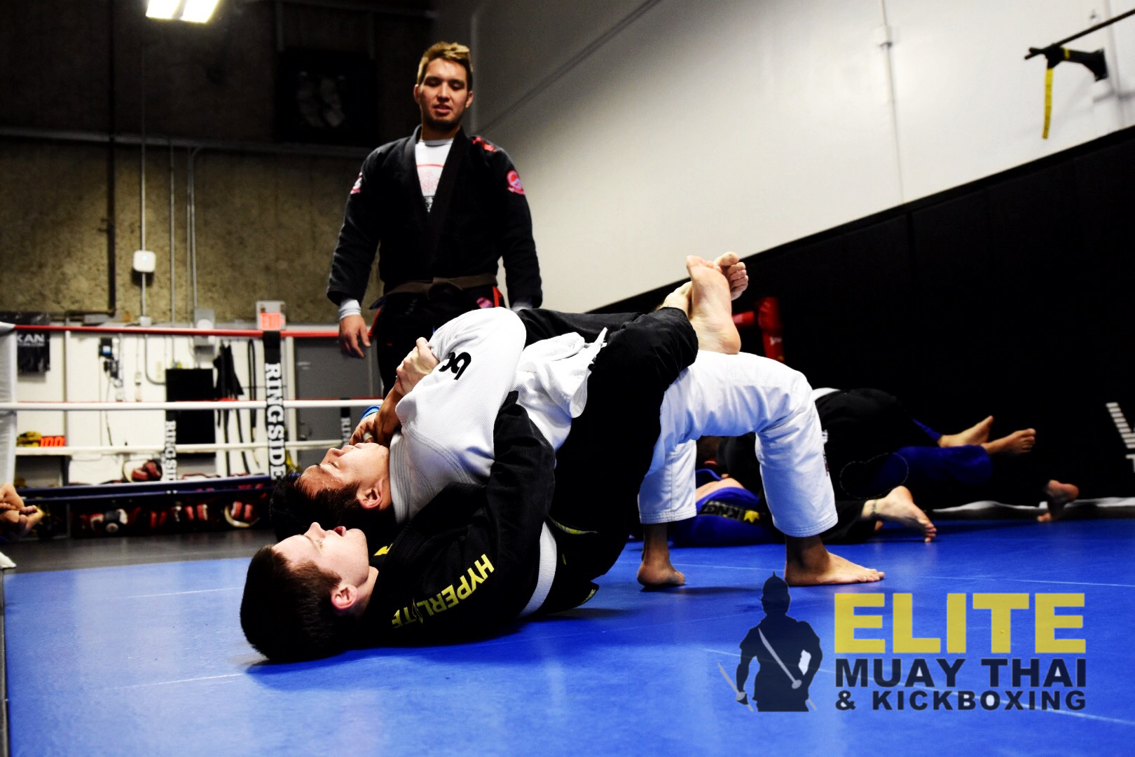 bjj grapplers on the mat in calgary
